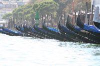 De steigerende gondels in Bacino San Marco